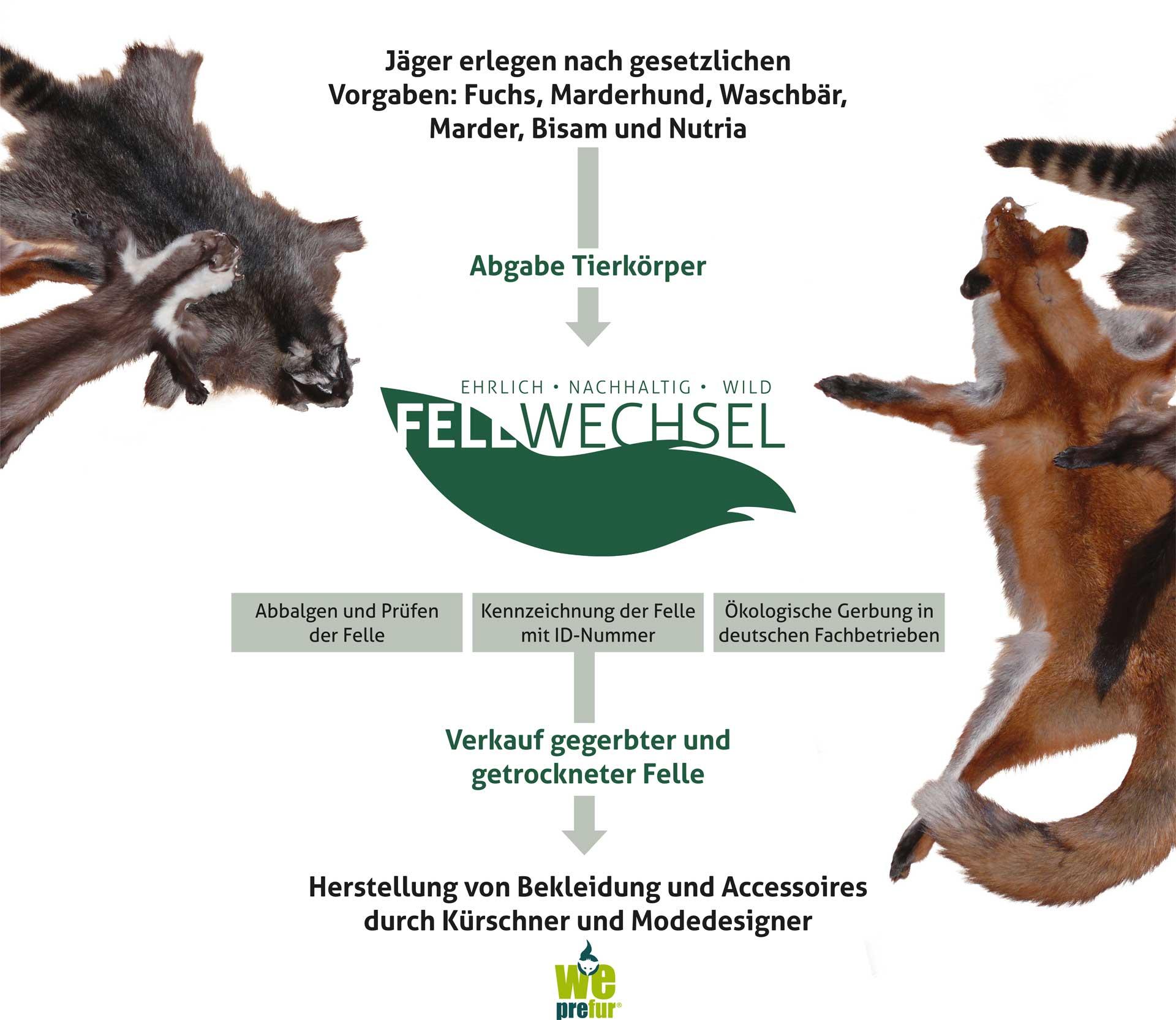 Wie funktioniert die Fellwechsel GmbH?